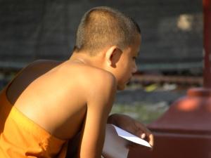 Novice monk studying - Luang Prabang